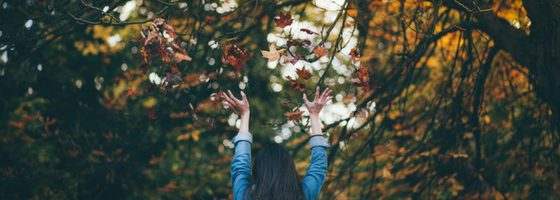 Moving into Perimenopause – the Autumn Phase of our Lives